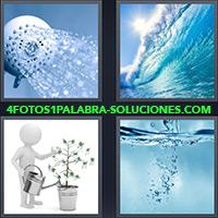 4 Fotos 1 Palabra - Personaje animado regando una planta |