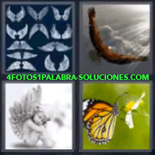 4 Fotos 1 Palabra - 4 Letras: Mariposa En Una Flor, Dibujos, Águila Con Rayos De Luz, Ángel. |
