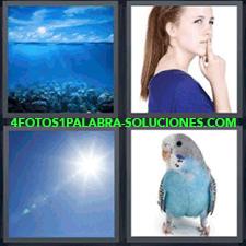 4 Fotos 1 Palabra - 4 Letras: Mar, Mujer De Azul, Cielo, Periquito Azul. |