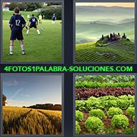 4 Fotos 1 Palabra - Niños jugando fútbol |