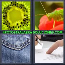 4 Fotos 1 Palabra - Dedo y bolígrafo escribiendo Saltamontes verde Tela vaquero o jeans Trozo de kiwi |