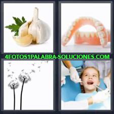 4 Fotos 1 Palabra - Cabeza de ajo Dentadura postiza Niño en el dentista Planta con pétalos volando |