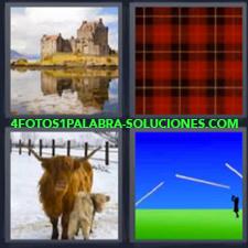 4 Fotos 1 Palabra - castillo cuadrados Dibujo con verde y azul Vaca de las Highlands en la nieve |