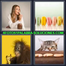 Chica comiendo crema de chocolate, Galletas o alfajores de colores, Mono comiendo Banana, Gato.
