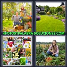 Huerta, Parque, Pasto, Césped, Fotos de flores y plantas, Mujer juntando vegetales u hortalizas