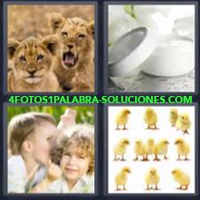 4 Fotos 1 Palabra - Cachorros De León Niños Cuchicheando Pollitos |