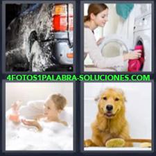 4 Fotos 1 Palabra - Lavadora Limpiando Carro O Coche Mujer En La Tina Bañándose Perro |