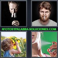 4 Fotos 1 Palabra - Niña con su cara en un girasol |