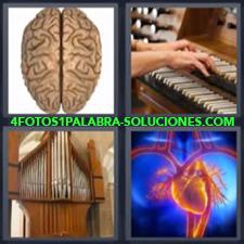 4 fotos 1 Palabra - 6 letras: Cerebro Corazón instrumento musical piano |