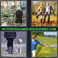 4 Fotos 1 Palabra - Zapatillas, Trekking, Pareja jugando con ojas en el otoño, Perro Dálmata