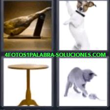 4 Fotos 1 Palabra - 4 Letras: Jamon, Perro, Mesa, Gato Jugando Con Un Ratón. |