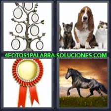 4 Fotos 1 Palabra - perros gatos caballo árbol portafotos Medalla |