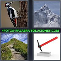 4 Fotos 1 Palabra - Montaña con cima nevada |