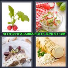 4 fotos 1 Palabra - 6 letras: fruta Ensalada mantel rojo cuadros Hortaliza Plato preparado |