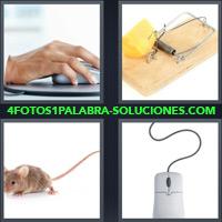 Mano sosteniendo un mouse, Rata, Ratón de computadora, Trampa para ratones con queso |