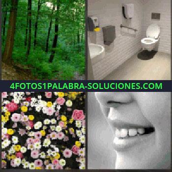4 Fotos 1 Palabra - Bosque. Cuarto de baño. flores estanque. Boca y narizndo.
