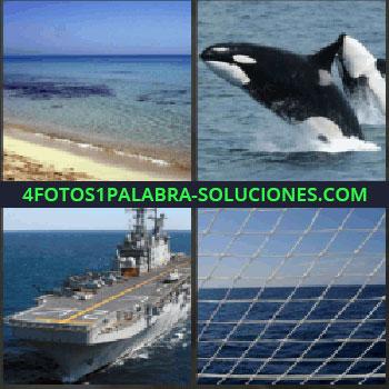 4 Fotos 1 Palabra - playa. Orcas. Portaaviones. Red con mar al fondo