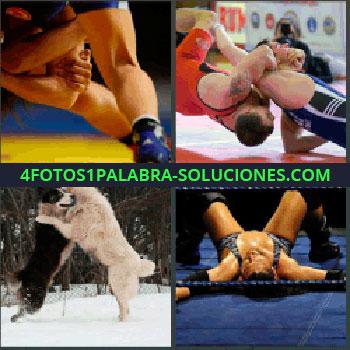 4 Fotos 1 Palabra - dos hombres luchando. Perros o lobos peleando. Hombre boca arriba derrotado