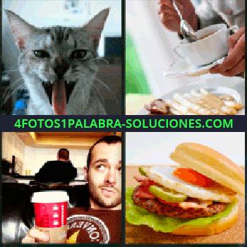 4 Fotos 1 Palabra - gato, Salsa en espárragos, Vaso de refresco, Hamburguesa