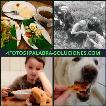 4 Fotos 1 Palabra - perro comiendo, Platos de comida, Foto antigua gente comiendo en el campo, Niño con plato de comida y perro de peluche