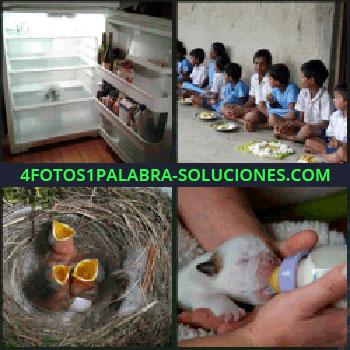 4 Fotos 1 Palabra - pájaros nido, Frigorífico o refrigerador, Niños sentados en el suelo para comer, Dando biberón o mamila a perrito.
