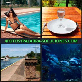 4 Fotos 1 Palabra - copa sobre plato, Mujer en bikini junto a la piscina o alberca, Mesa con plato cubiertos y copa, Lancha o barco por canal.