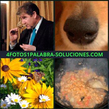 4 Fotos 1 Palabra - hocico perro, Señor catador de vinos, Flores, Margaritas, Cocinando
