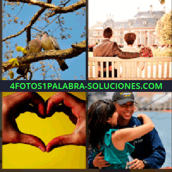4 Fotos 1 Palabra - Pareja de palomas o tórtolas en una rama, hombre y mujer sentados en un banco, pareja abrazandose, manos formando corazón