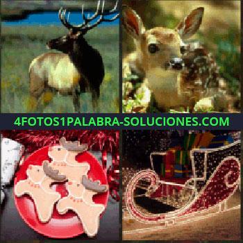 4 Fotos 1 Palabra - reno. Cervatillo. Adornos de navidad. Carro de Papa Noel.