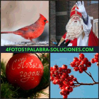 4 Fotos 1 Palabra - pájaro rojo. Religioso. Bola de navidad. Bayas