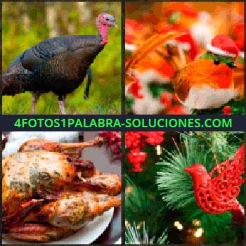 4 Fotos 1 Palabra - pavo. Adorno pájaro. Pollo asado. Arbol navidad con adornos