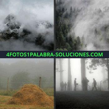 4 Fotos 1 Palabra - Montaña de heno, paisaje nublado, gente en un bosque con niebla, bosque con niebla