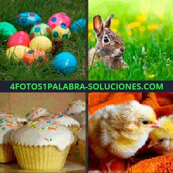4 Fotos 1 Palabra - Huevos de colores, muffins, cupcakes, conejo en la hierba, pollitos conejo para seguir divirtiéndote