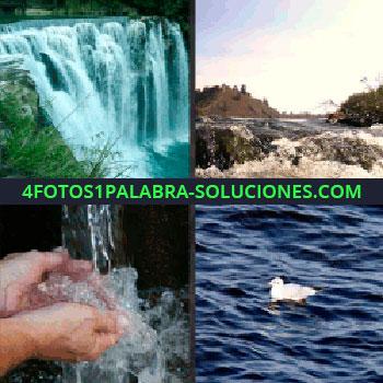 4 Fotos 1 Palabra - Manos bajo un chorro de agua, pájaro en el agua, río, agua catarata