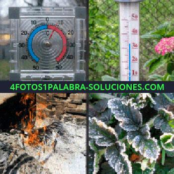 4 Fotos 1 Palabra - Hoguera, fuego, ceniza, planta con hielo en las hojas, termómetro escarcha
