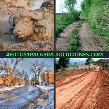 4 Fotos 1 Palabra - Camino, calle con nieve y hielo, fango, camino embarrado, búfalo que estabas buscando