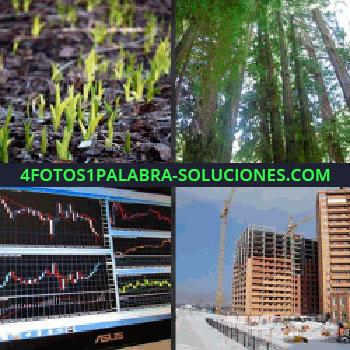 4 Fotos 1 Palabra - Edificios en construcción, pantallas con gráficos, árboles en un bosque, cultivo