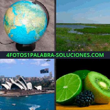 4 Fotos 1 Palabra - Frutas, kiwi, lima, mora, Sidney, ciudad, paisaje verde con agua, lago, río, bola del mundo