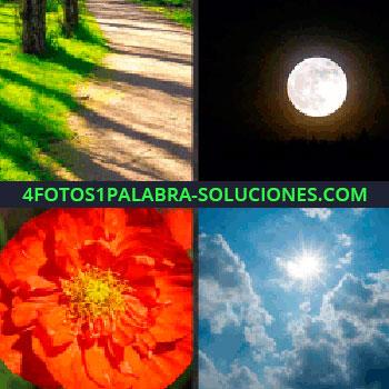 4 Fotos 1 Palabra - Cielo oscuro con luna llena, flor roja, cielo azul con nubes, camino luna (^_^