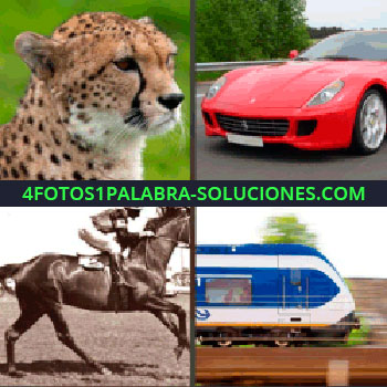 4 Fotos 1 Palabra - guepardo. Coche deportivo o Ferrari. Caballo de carreras. Tren o ferrocarril