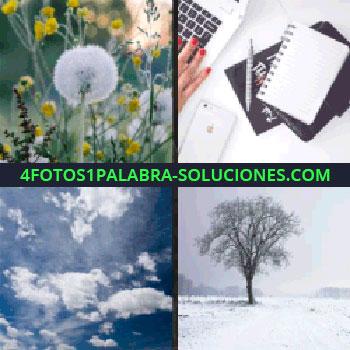 4 Fotos 1 Palabra - Libreta, ordenador, computadora, iPhone, diente de león, árbol nieve cielo que estabas buscando