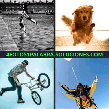 4 Fotos 1 Palabra - Foto en blanco y negro de dos chicos saltando al agua, salto con bicicleta, perro paracaidistas
