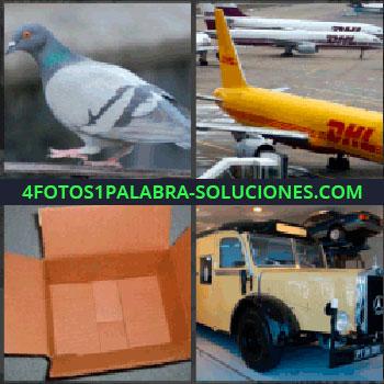 4 Fotos 1 Palabra - avion dhl, Paloma, Caja de cartón, Camión antiguo
