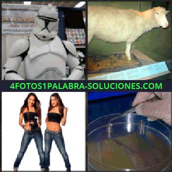 4 Fotos 1 Palabra - 2 chicas con jeans y top negro, científico, oveja dolly, soldado oveja