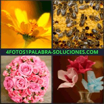 4 Fotos 1 Palabra - margarita. Panal de abejas. Rosas. Flores en jarrón