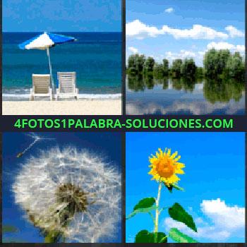 4 Fotos 1 Palabra - Dos sillas y una sombrilla en la orilla de la playa, paisaje con lago, diente de león, girasol y cielo azul, girasol playa