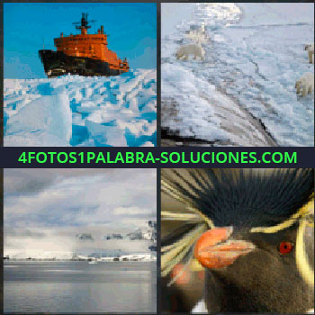 4 Fotos 1 Palabra - Barco rompe hielos. osos polares. Mar con hielo. Pingüino. Iceberg