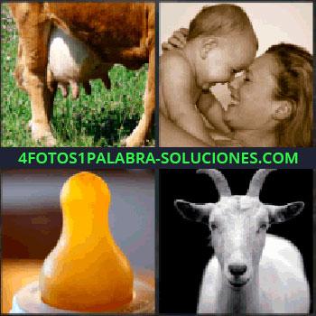 4 Fotos 1 Palabra - Ubres de vaca. Mama con bebe. Tetina de biberon o mamila. cabra