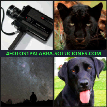 4 Fotos 1 Palabra - Cámara cinematográfica, una persona observando el cielo estrellado, pantera perro.