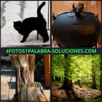 4 Fotos 1 Palabra - Caldero, escobas, bosque, gato negro